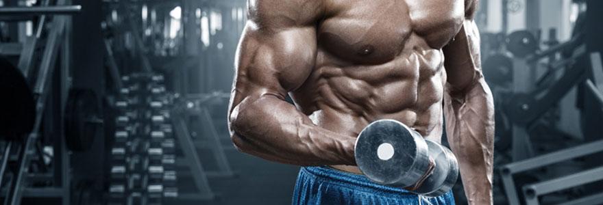 Exercices de musculation : travailler ses abdos efficacement