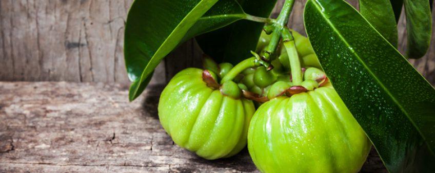 Comment prendre le Garcinia Cambogia ?